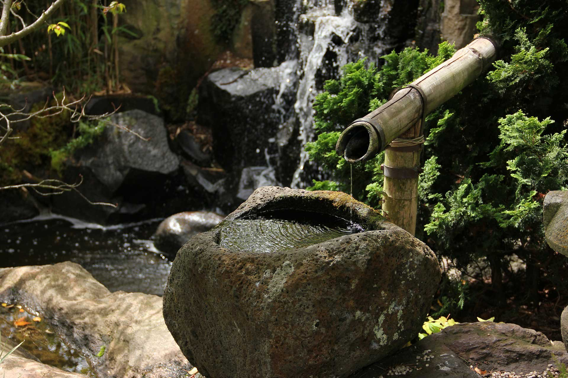 water feature banner